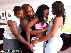 Big Boobs Big Butts Group Sex Hardcore