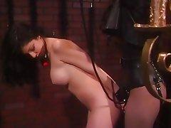 BDSM Big Boobs Brunette Latex